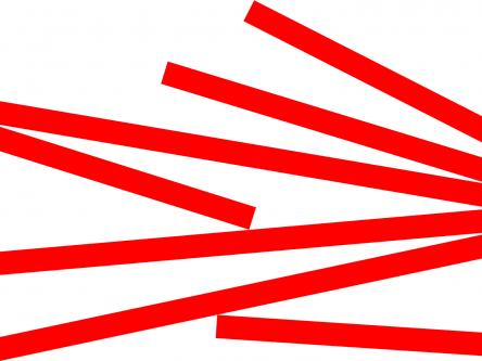 Die Demokratische Partei nach dem ›SUPER TUESDAY‹ Titlebild