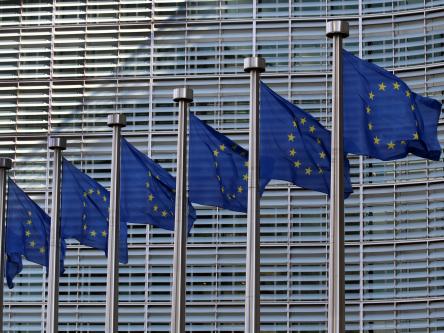 Klimaretterin Europäische Union? Titlebild
